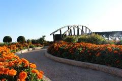 Jardín chino con el puente hermoso y macizo de flores en la manera imagen de archivo libre de regalías