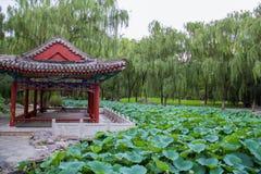 Jardín clásico chino Fotografía de archivo libre de regalías