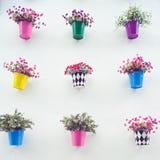 Jardín colorido en la pared Foto de archivo libre de regalías