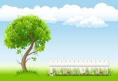 Jardín con el árbol Fotos de archivo libres de regalías