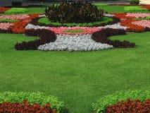 Jardín con la composición de la flor Foto de archivo libre de regalías