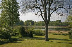 Jardín con la visión Fotografía de archivo libre de regalías