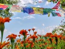 Jardín con las banderas del rezo imagen de archivo libre de regalías