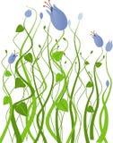 Jardín con las flores azules stock de ilustración
