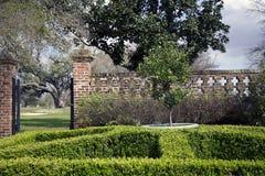 Jardín con los setos Foto de archivo