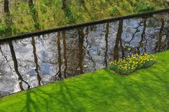 Jardín con un pequeño río Imágenes de archivo libres de regalías