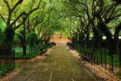 Jardín conservador en Central Park imagenes de archivo