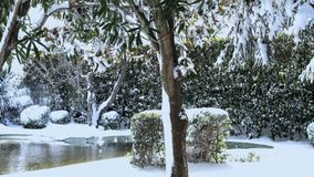 Jardín cubierto por la nieve almacen de metraje de vídeo
