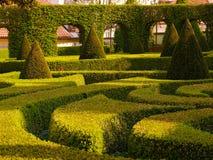 Jardín de Baruque Fotografía de archivo