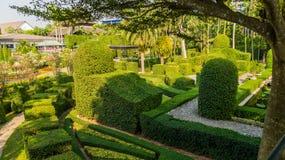 Jardín de colores del jardín tropical Tailandia de Nong Nooch del parque Imagenes de archivo