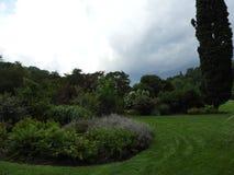 Jardín de Cornell Botanic Garden Shrub Collection en verano Fotos de archivo libres de regalías
