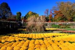 Jardín de flor del estado de Biltmore imagenes de archivo