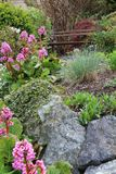 Jardín de flor del resorte Fotografía de archivo libre de regalías