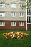 Jardín de flor urbano fotos de archivo libres de regalías