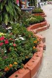 Jardín de flores Imagenes de archivo