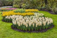 Jardín de flores Fotografía de archivo libre de regalías