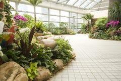 Jardín de flores coloridas en resorte Foto de archivo libre de regalías