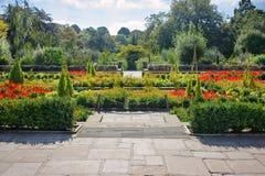 Jardín de flores con las trayectorias Fotos de archivo
