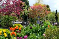 Jardín de flores con los tulipanes Fotos de archivo libres de regalías