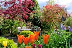 Jardín de flores con los tulipanes Imagenes de archivo