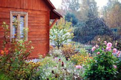 Jardín de flores con sus propias manos Imagen de archivo