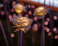 Jardín de flores del LED con Bokeh en el tejado de la plaza DDP del diseño de Dongdaemun Fotos de archivo libres de regalías
