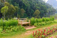 Jardín de flores en la estación agrícola real Angkhang Fotografía de archivo libre de regalías