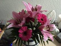 Jardín de flores hermoso Foto de archivo libre de regalías