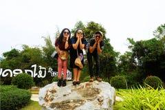 Jardín de flores de Sun en Vang Vieng, Laos Imagenes de archivo