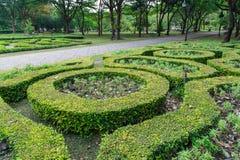 Jardín de flores tropical en parque de la reina Sirikit Imagen de archivo