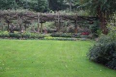 Jardín de flores y espacio verde Fotos de archivo