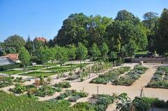Jardín de hierbas foto de archivo