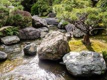 Jardín de Japón de la tradición, jardín del zen Foto de archivo