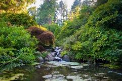 Jardín de Kubota Fotos de archivo