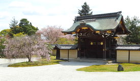 Jardín de Kyoto Fotografía de archivo