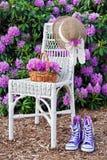 Jardín de la azalea del verano foto de archivo libre de regalías