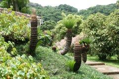 Jardín de la balata, Martinica Foto de archivo libre de regalías