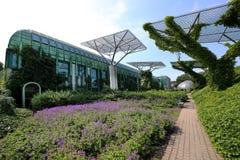 Jardín de la biblioteca de la universidad de Varsovia imagen de archivo libre de regalías