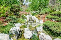 Jardín de la cala Imagen de archivo libre de regalías