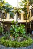 Jardín de la casa vieja magnífica. Fotografía de archivo