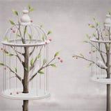 Jardín de la cereza con las células y los pájaros Fotos de archivo libres de regalías