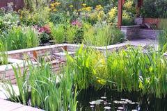 Jardín de la charca Imagen de archivo