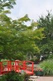 Jardín de la charca Imagen de archivo libre de regalías
