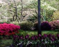 Jardín de la ciudad Foto de archivo libre de regalías