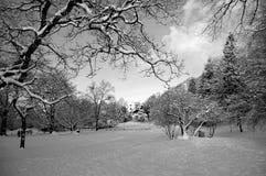 Jardín de la ciudad después de la nieve Fotos de archivo libres de regalías