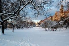 Jardín de la ciudad después de la nieve Imagen de archivo libre de regalías