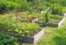 Jardín de la comunidad Imagen de archivo libre de regalías