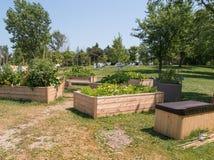 Jardín de la comunidad Imágenes de archivo libres de regalías