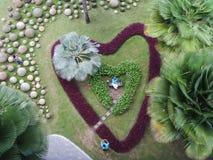 Jardín de la forma del corazón Imágenes de archivo libres de regalías