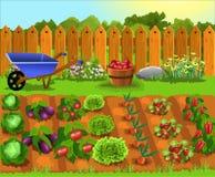 Jardín de la historieta con las frutas y verduras ilustración del vector
